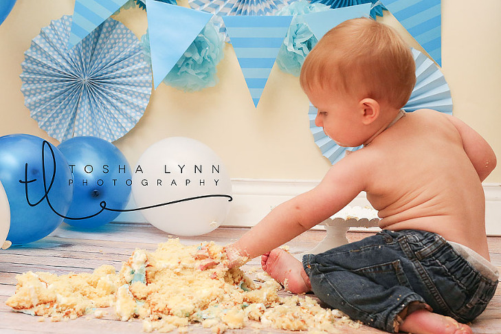 first birthday family photographer