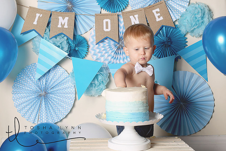 first birthday photographer granite bay folsom rocklin roseville auburn loomis
